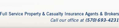 Full Service Property and Casualty Insurance Agents and Brokers